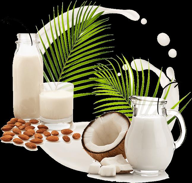 lait d'amande et lait de coco