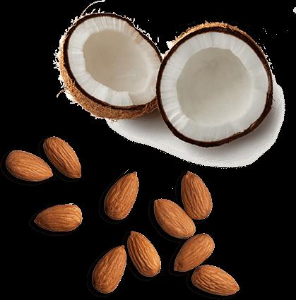 Noix de coco et amandes